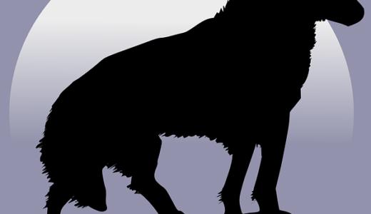 すべて無料!おすすめの人狼ゲーム5選(一人用からオンライン対戦まで)